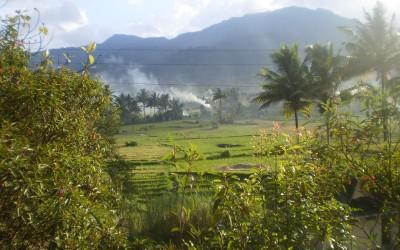 Taman Nasional Batang Gadis akan Dijadikan Tambang Emas?