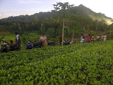 Kisah Desa di Kukar yang Dihadapkan Ancaman Aktivitas Tambang Batu Bara